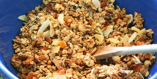 Tropical Granola 05