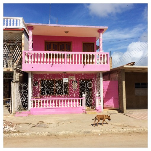 Love the architecture in Cuba - even has pink houses